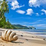 Dünyaca Ünlü İsimler Tropik Adalar Tatili Tercih Ediyor